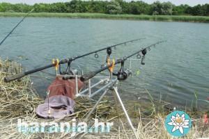 Pecanje_Baranja_2012