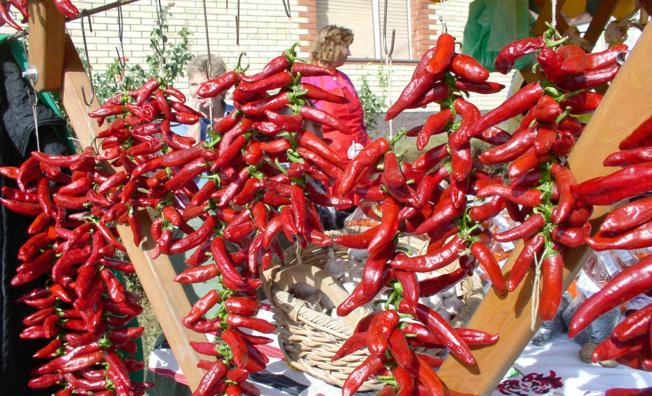 Baranjska paprika ima organoleptička svojstva daleko bolja od paprike iz drugih dijelova Hrvatske